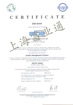 ELBE DQS Gmbh ISO16949